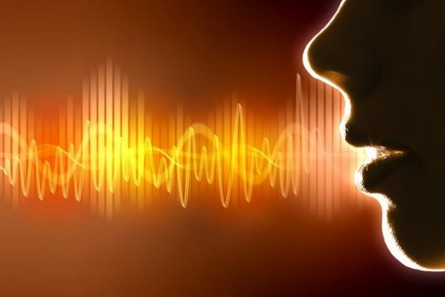 Voice Expert Witness