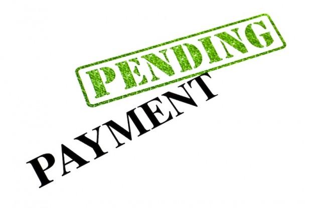 Expert Payment