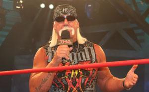 Hulk Hogan's Experts Testify Against Gawker