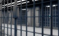Expert Witness Report Alleges Negligence in Prison Death