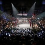 Experts Challenged In UFC Antitrust Lawsuit