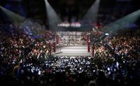 UFC, fighting ring